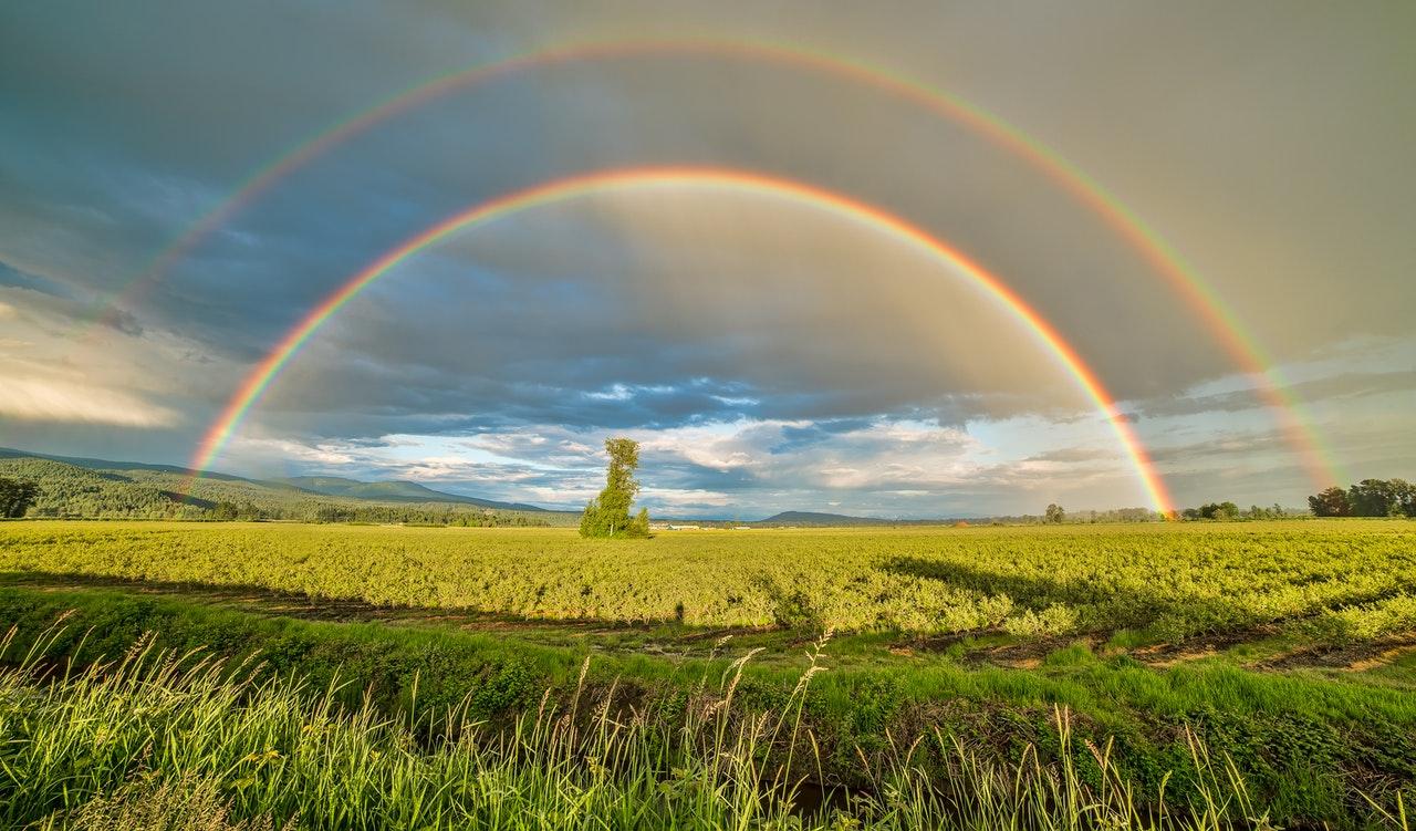 spring rainbows